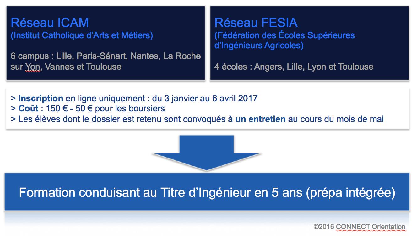 Réseau ICAM et FESIA